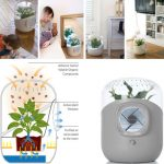 The benefits of air purifiers that we do not know.